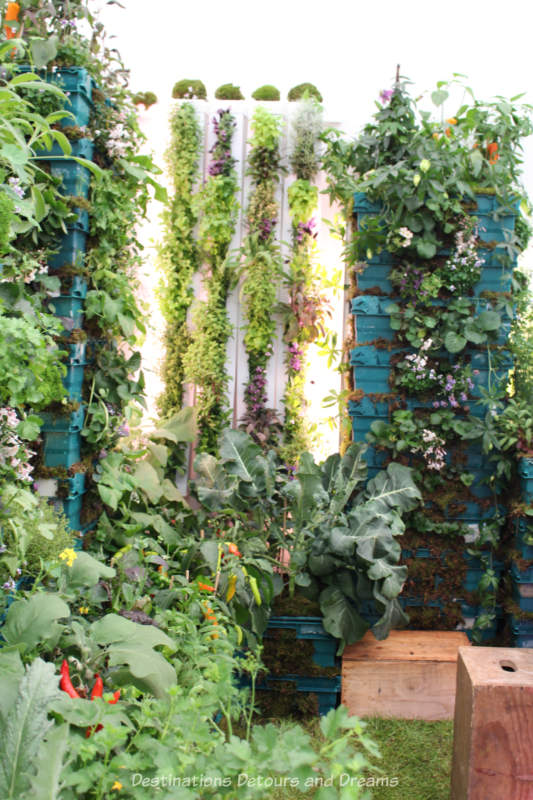 Vertical planting at the 2019 Chelsea Flower Show