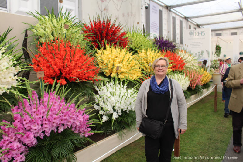 Gladiolas at the Chelsea Flower Show