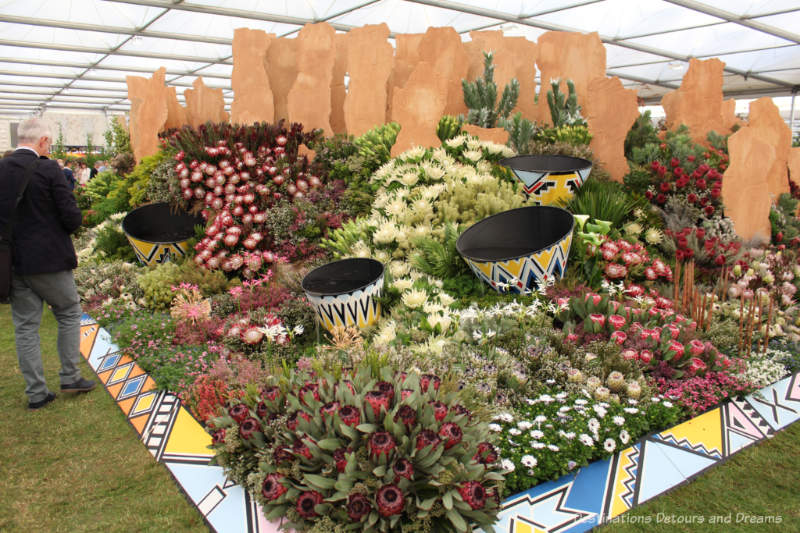 South African display at the 2019 Chelsea Flower Display