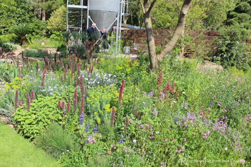 The Resilience Garden at the 2019 Chelsea Flower Show