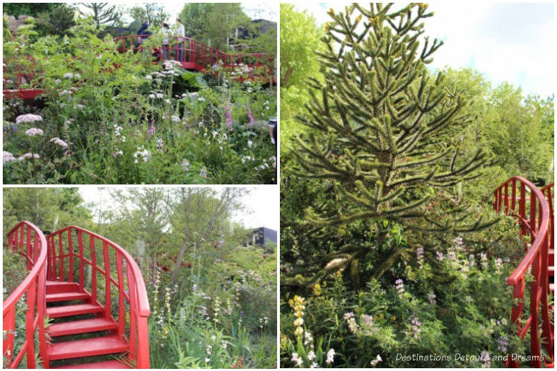 A collage of photos from the lush planting up a slope of the Trailfinders Latin American Show Garden at the 2019 Chelsea Flower Show