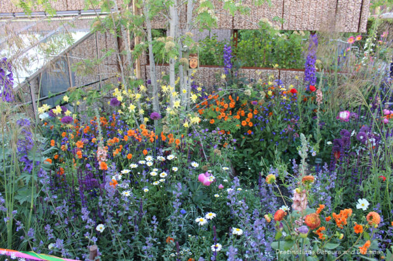 Brightly coloured flowers in the Montessori Centenary Children's Garden at  the 2019 Chelsea Flower Show