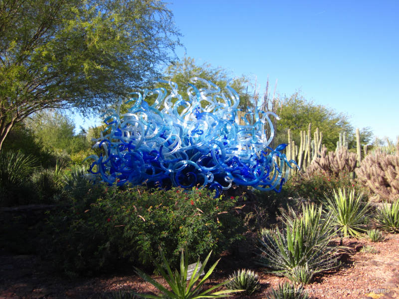 Chihuly Blue Flori Sun in Desert Botanical Garden