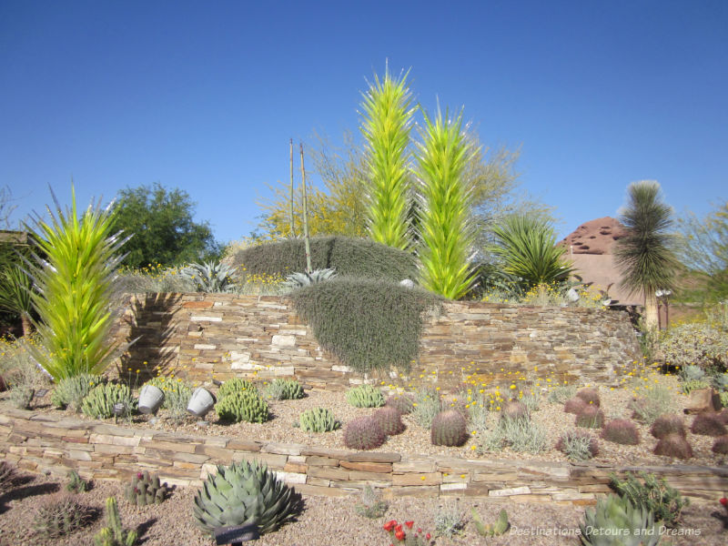 """Chihuly """"trees"""" at the entrance to the Phoenix Desert Botanical Garden"""