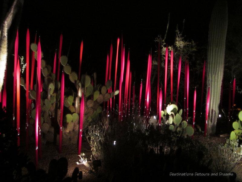 Chihuly reeds at night