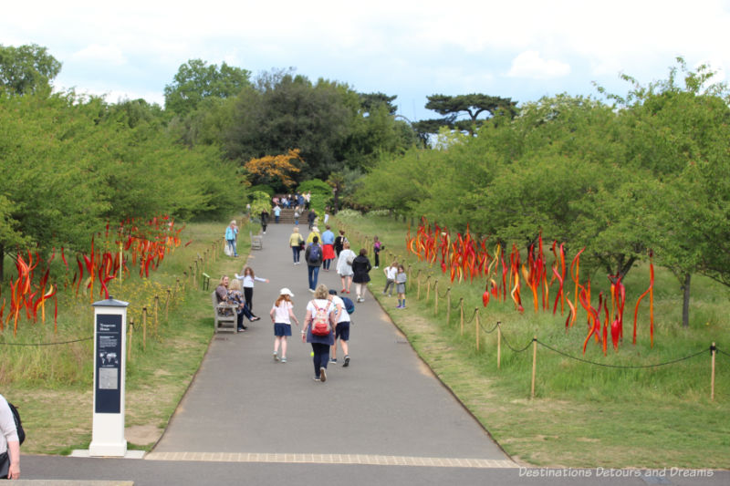 Chihuly red and copper glass reeds lining a walking at Kew Gardens
