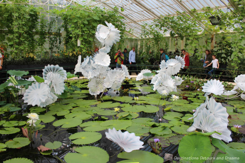 Chihuly blown-glass white flowers rimmed with black steel on a lily pond at Kew Gardens