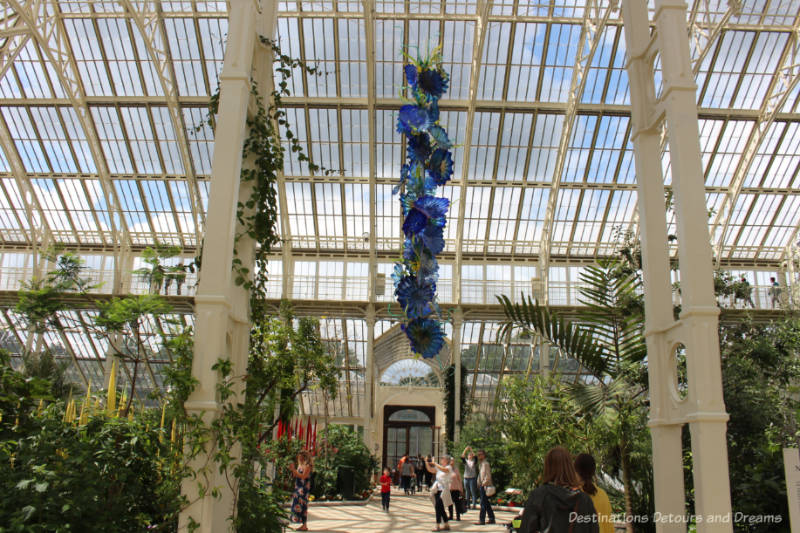 Chihuly glass sculpture in shades of blue hanging from ceiling in Temperate House at Kew Gardens