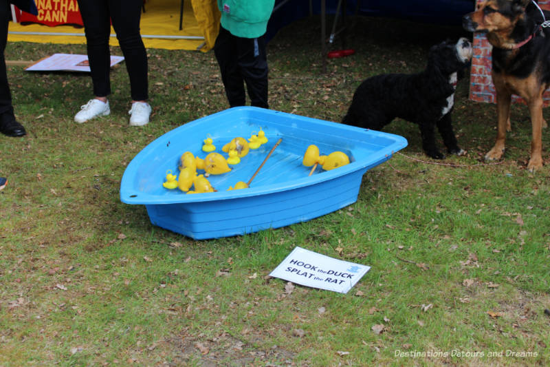 Hook the Duck game at an English village fête