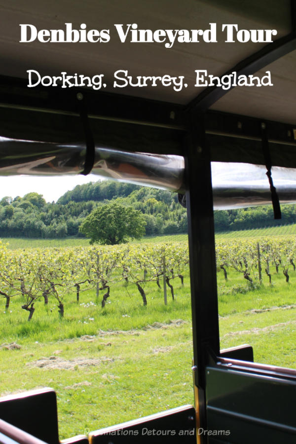 Denbies Wine Esate Vineyard Tour in Dorking, Surrey: A scenic vineyard tour at one of the United Kingdom's largest wine producers. #England #Surrey #winery #Dorking #SurreyHills