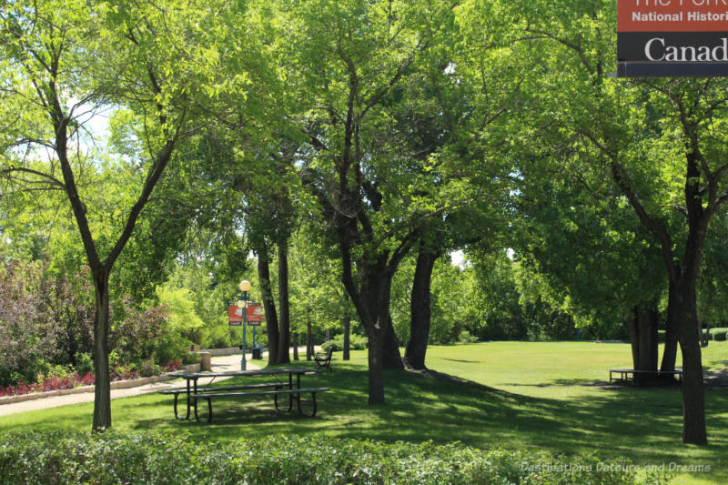 Treed grassy area with picnic tables at The Forks in Winnipeg, Manitoba