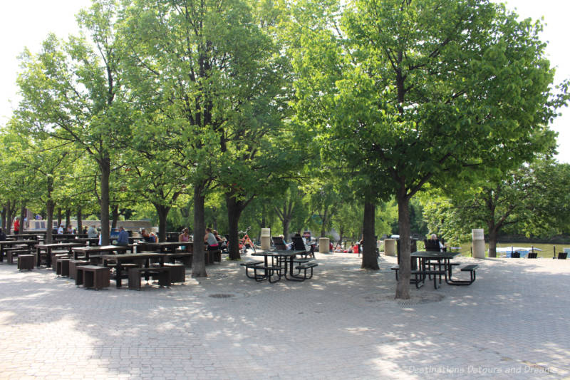 Picnic tables shaded by trees on the patio at The Forks in Winnipeg, Manitoba
