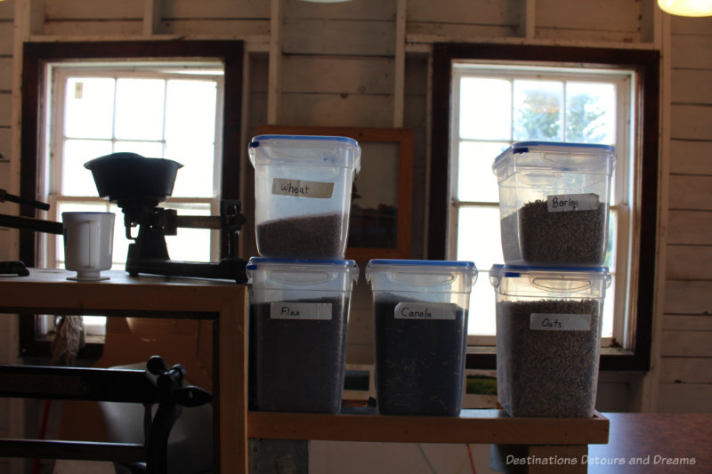 Jars of different grains beside a scale at the Inglis Grain Elevators National Historic Site