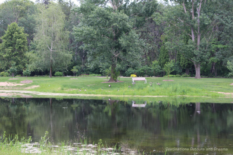 Pond, natural green space and trees at the Aga Khan Garden at the University of Alberta Botanic Garden