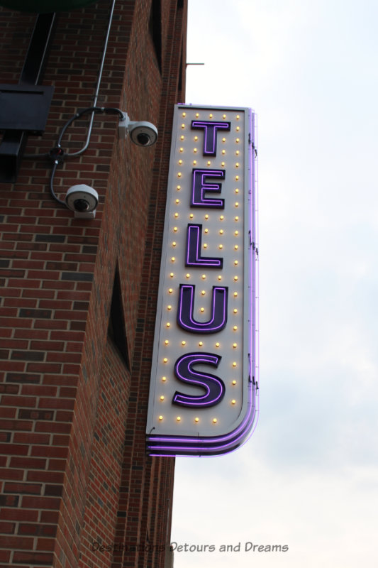 TELUS neon sign in Edmonton