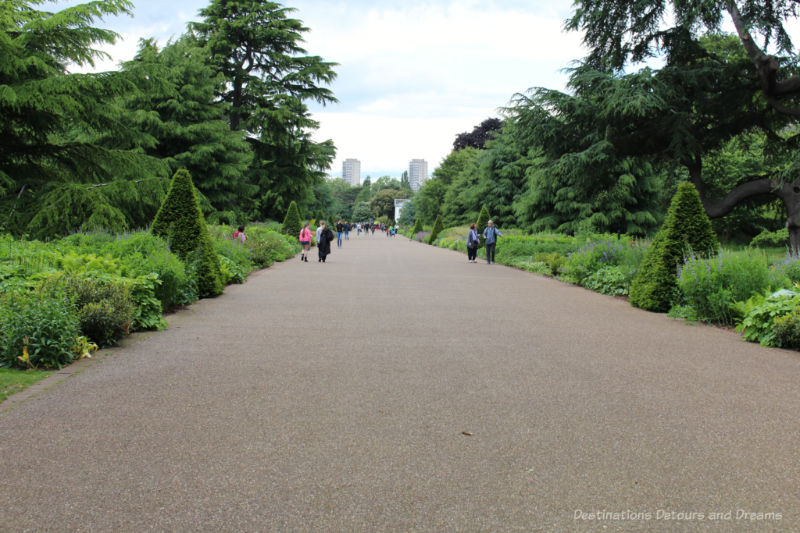 Flowers, shrubs and trees bordering the wide paved Broad Walk at Kew Gardens