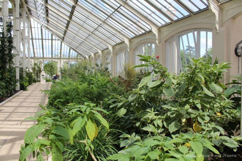 Walkway alongside greenway with glass walls and roof of the Temperate House at Kew