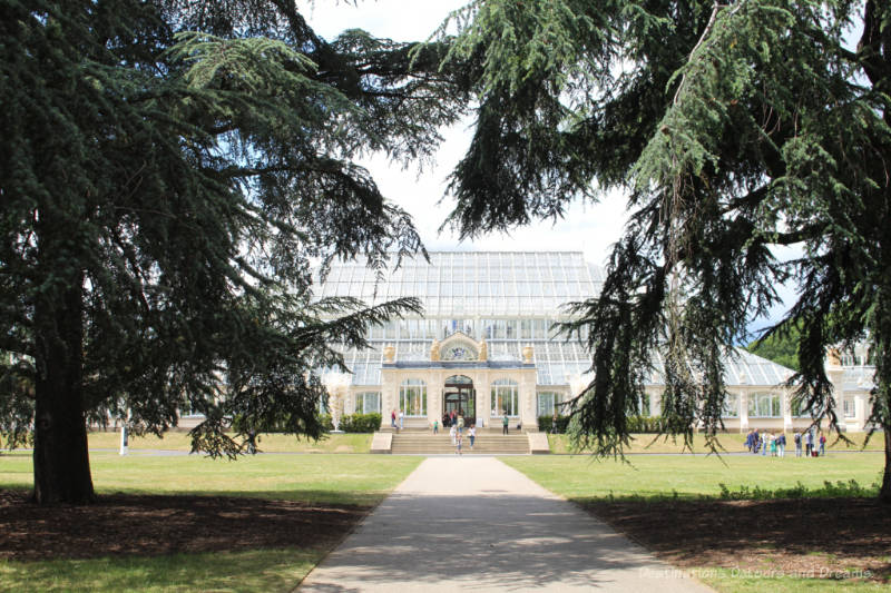 Glass conservatory of Kew Gardens Temperate House framed by evergreen branches