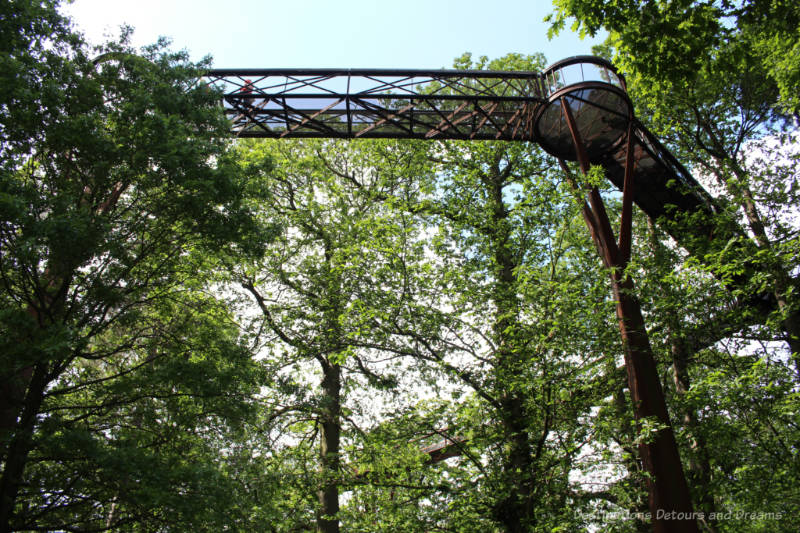 A railed walkway of weathered steel amid branches and leaves at treetop level in Kew Gardens