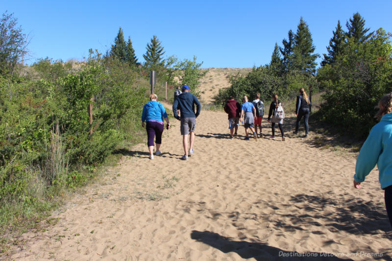 People walking up a sand trail bordered by low trees at Spirit Sands, Manitoba