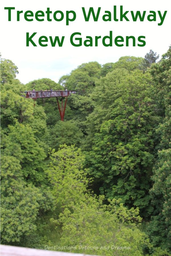 The Treetop Walkway at London's Kew Gardens gives you a close-up view of the trees and a birds-eye view of Kew Gardens #London #England #KewGardens #kew #gardens #TreetopWalkway
