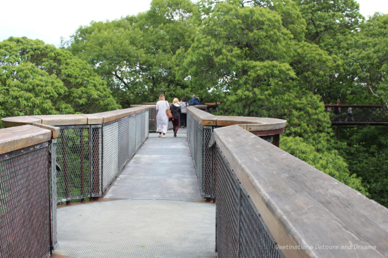 Walkway with railing and small lookout points of the Treetop Walkway at Kew