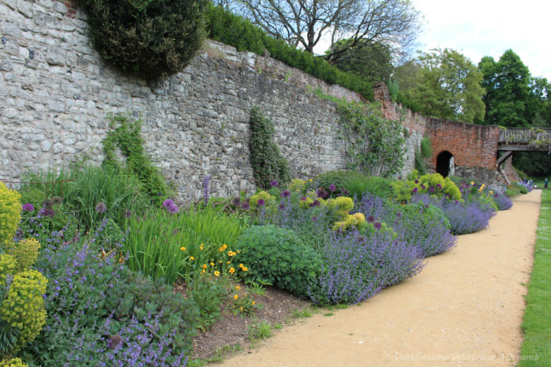 Border of plants with blue and purple flowers along brick wall at Eltham Palace