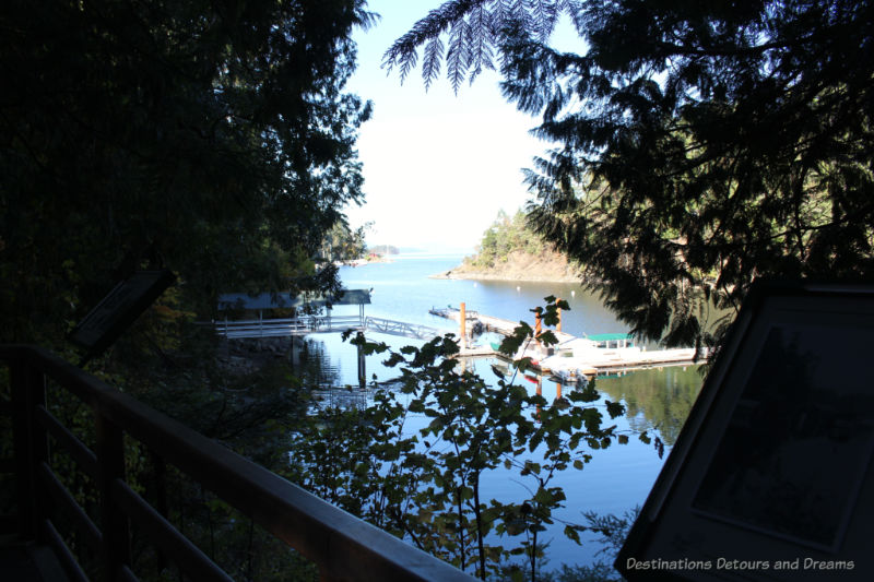 Looking out over Butchart Cove from a deck bordered by trees