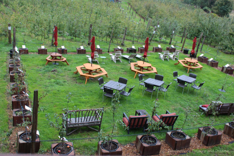 Picnic tables and other seating on a grassy area beside Salt Spring Island Company orchard