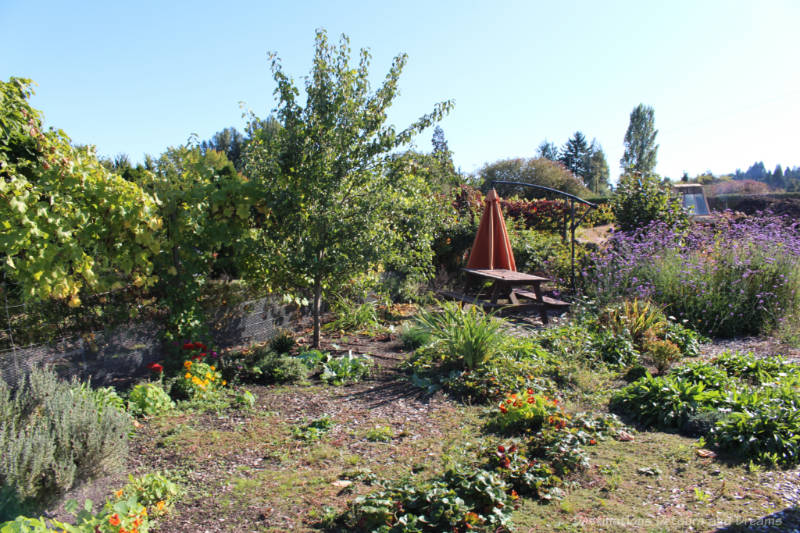 Flower, vegetable and herb garden area with picnic table at The Roost