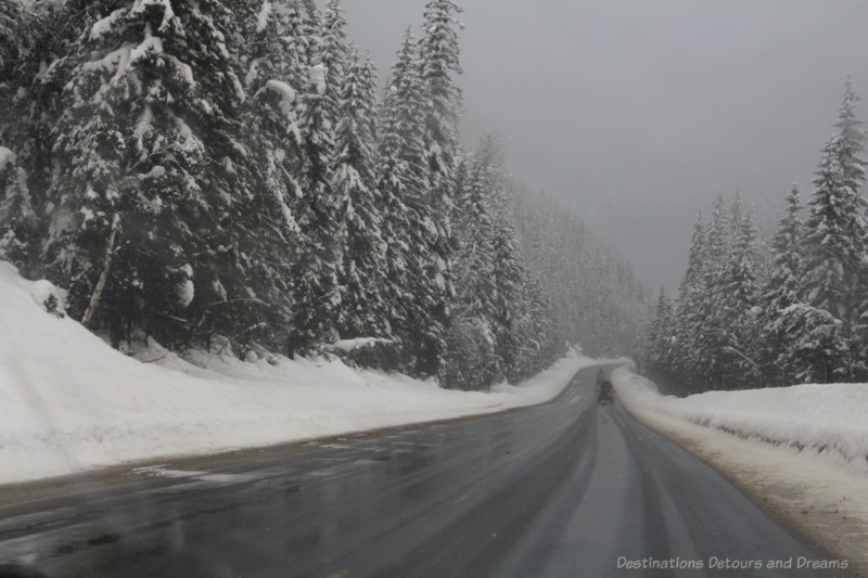 Mountain highway in British Columbia with with snow and snow-covered fir trees on either side and light snow falling