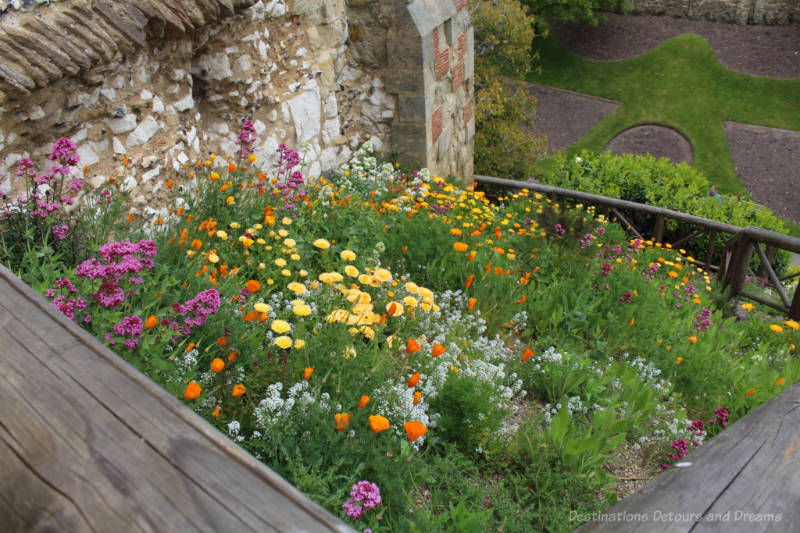 A bed of blooming yellow, orange and purple flowers in Guildford Castle grounds