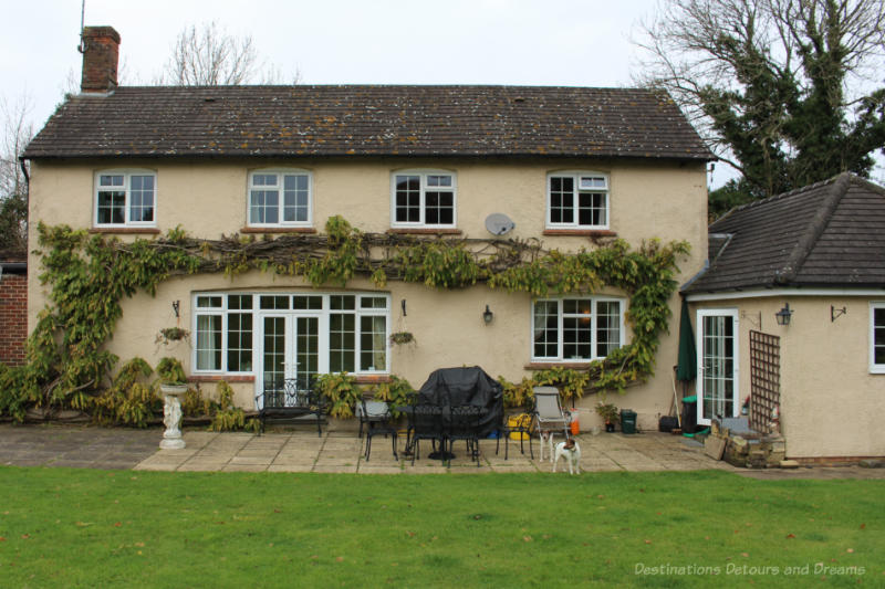 An English country house and patio area in back garden with two dogs
