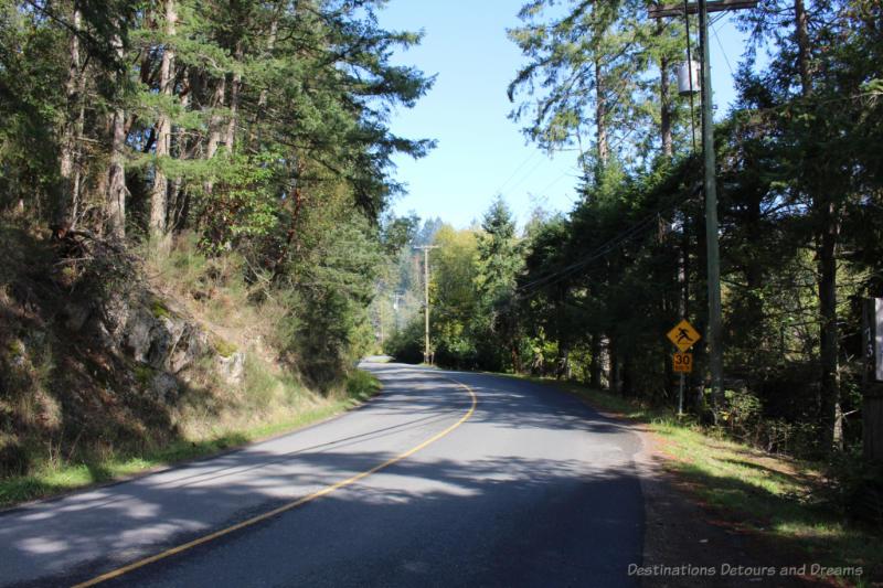 Road curving through forest on Salt Spring Island