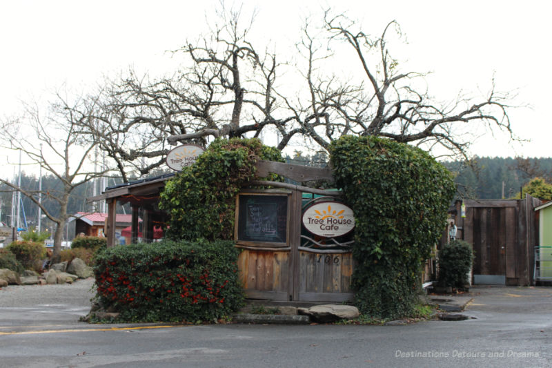 Tree growing out of centre of Tree House Cafe on Salt Spring Island