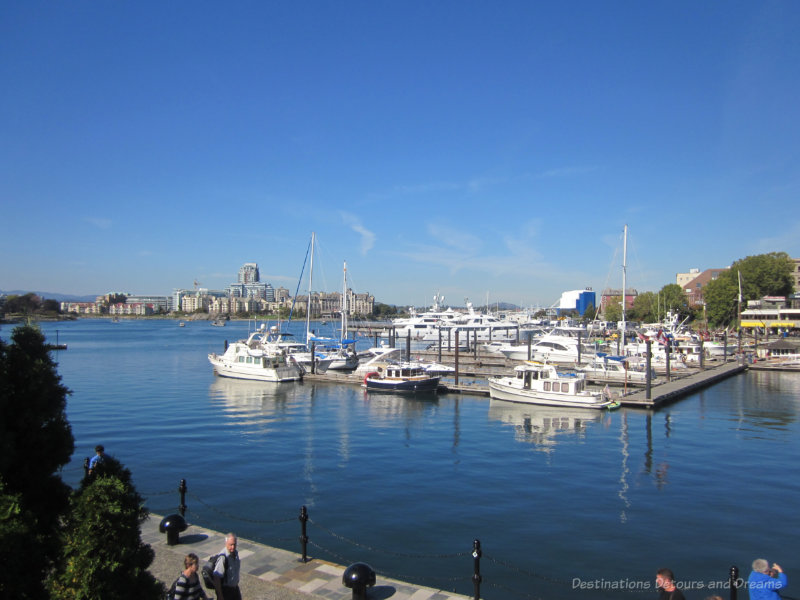 Marina lined with boats in Victoria Inner Harbour
