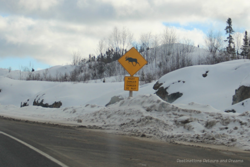 Moose Night Danger sign along Canadian highway