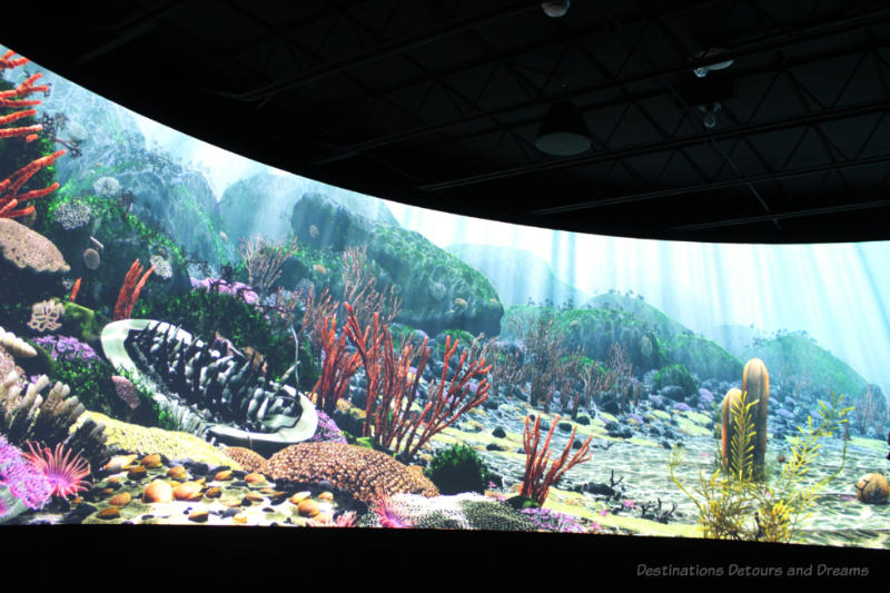 Screen showing recreation of ancient sea life at Manitoba Museum