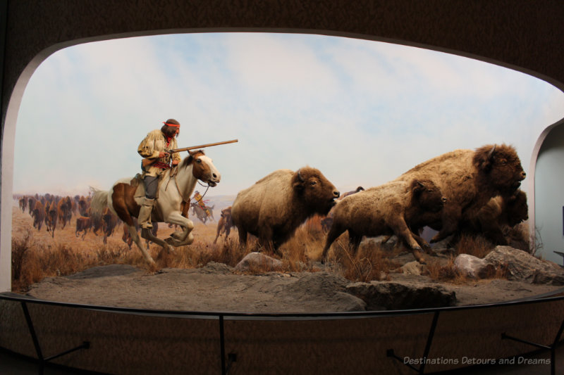 Scene of hunter closing in on bison from a panorama in Orientation Gallery at Manitoba Museum