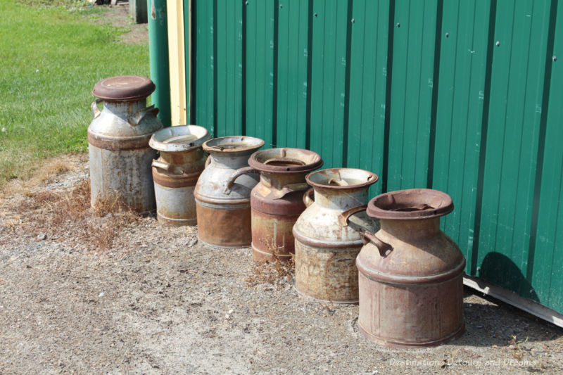 A row of old rusted milk cans