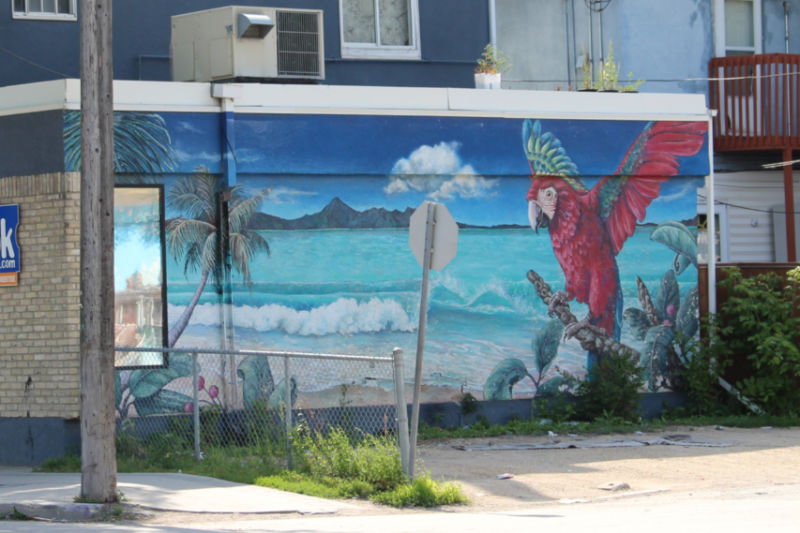 Mural showing blue ocean, sky, mountains, from the shore with a large red parrot on the right hand side