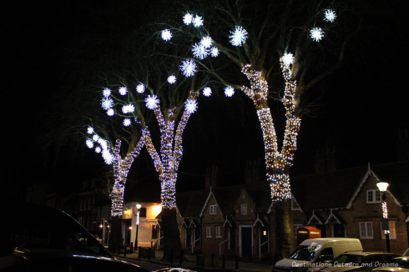Lights wrapped around the trunks of three trees and snowflake lighted decorations hanging from top branches