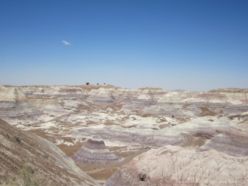 Gray and blueish colours in the rock hills of the Painted Desert