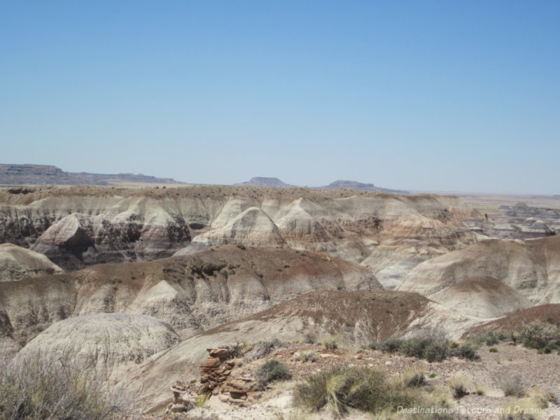Beige and gray hills caused by years of erosion in Petrified Forest National Park