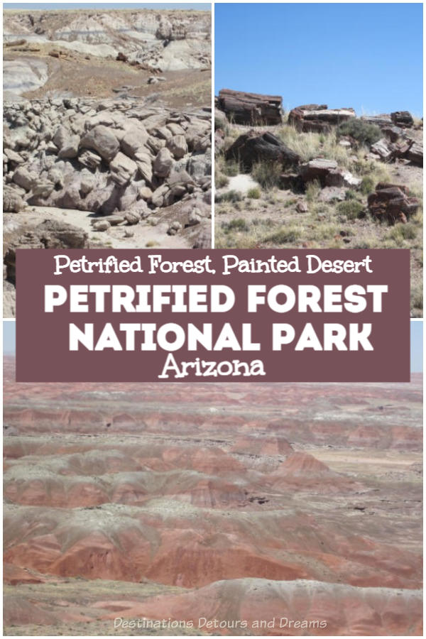Petrified Forest National Park in the Painted Desert of Arizona contains spectacular and eerie scenery with petrified wood deposits and rocks displaying rainbows of colour