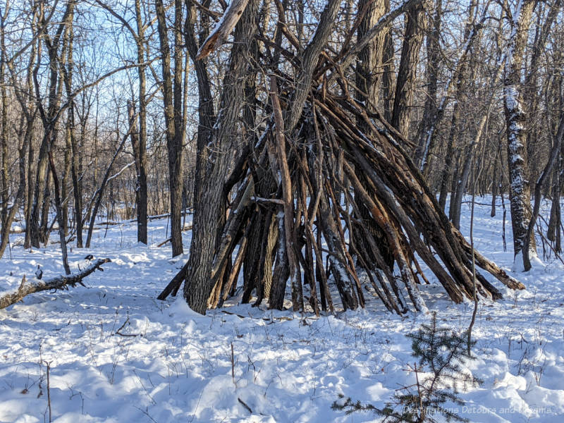 A tepee-like warming shelter made of twigs and logs in a forest