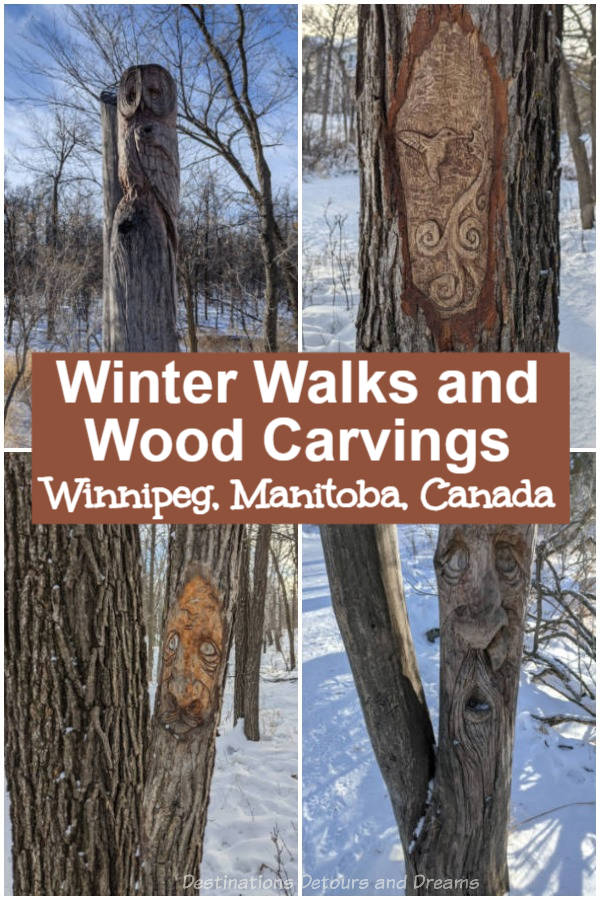 Winter Walks and Wood Carvings in Winnipeg, Manitoba. Seine River Greenway, one of three parks highlighted for winter walking trails in southeast Winnipeg, Manitoba, Canada, contains a collection of wood carvings. St. Vital Park, and Henteleff Park also contain walking trails.