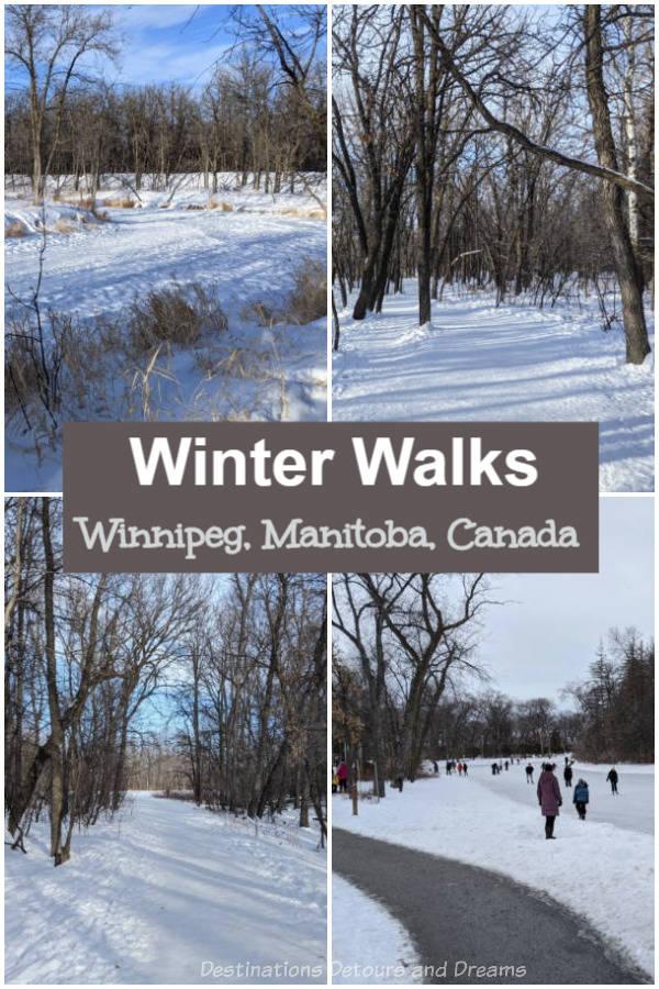Winnipeg Winter Walks: Winter walking trails in St. Vital Park, Henteleff Park, and Seine River Greenway in Winnipeg, Manitoba, Canada