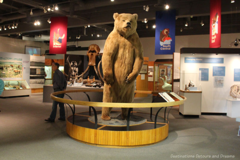 Large stuffed bear at the entrance to a museum gallery at Museum of the North