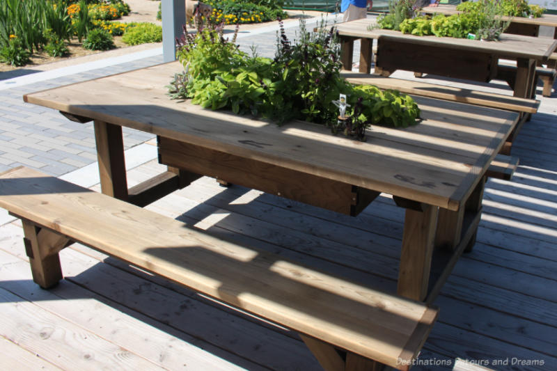 Wooden picnic table with a herb planted in the centre of the table